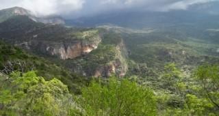 Puntland Galgala
