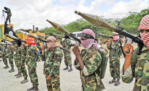 Somali arms